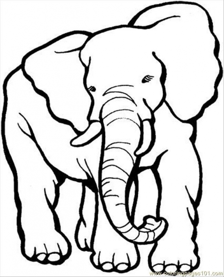Get This African Elephant Coloring Pages Free Printable 5678093 !