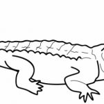 Alligator Coloring Pages Free for Kids   e9bnu