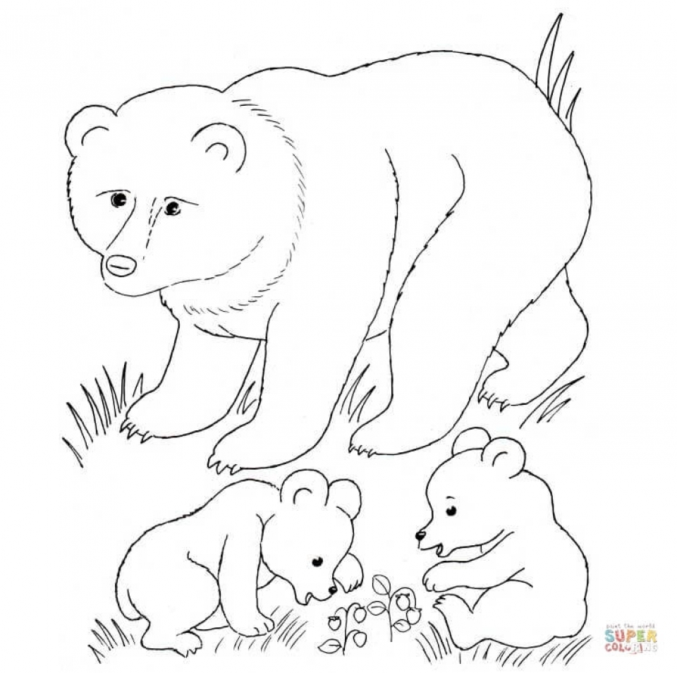 Baby Animal Coloring Pages Free Printable   75185