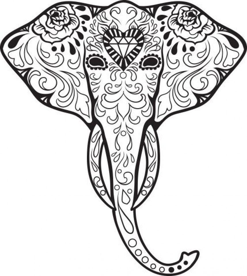 Intricate coloring pages elephant