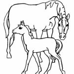 Easy Preschool Printable of Farm Animal Coloring Pages   qov5f