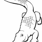 Easy Printable Alligator Coloring Pages for Children   la4xx