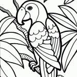 Free Parrot Coloring Pages to Print   16629