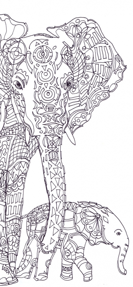 Free Printable Coloring Pages Elephant Get This For Adults Ti380