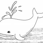 Free Whale Coloring Pages to Print   39122