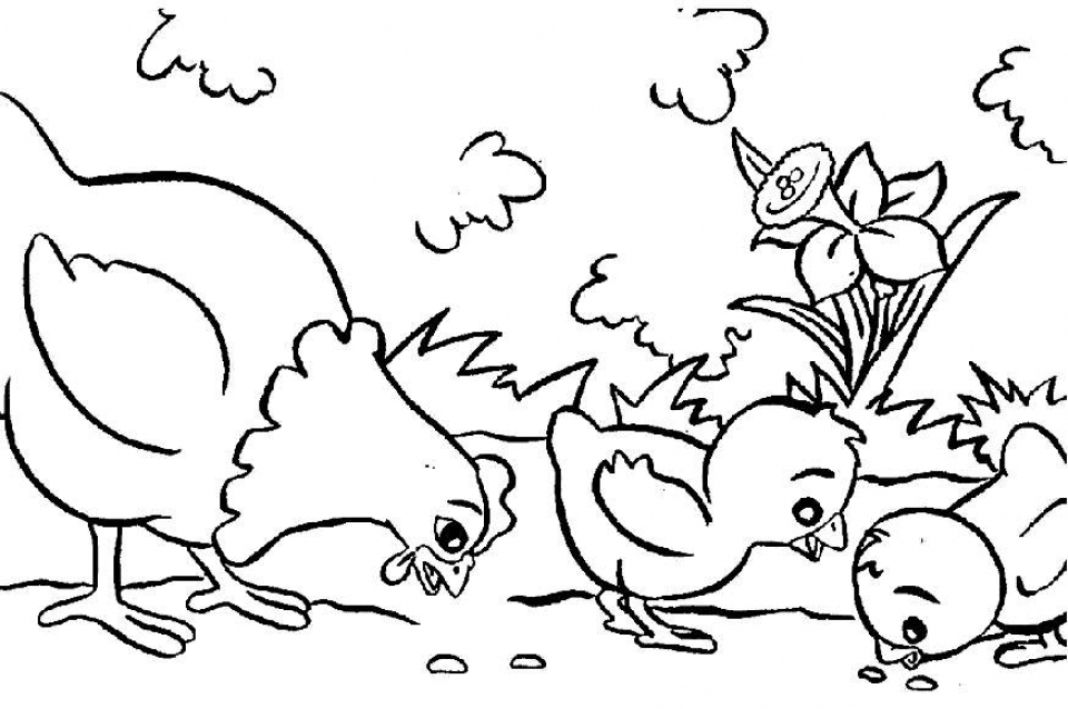 Online Farm Animal Coloring Pages for Kids   sz5em
