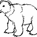 Online Polar Bear Coloring Pages for Kids   sz5em