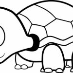 Online Printable Turtle Coloring Pages   rczoz