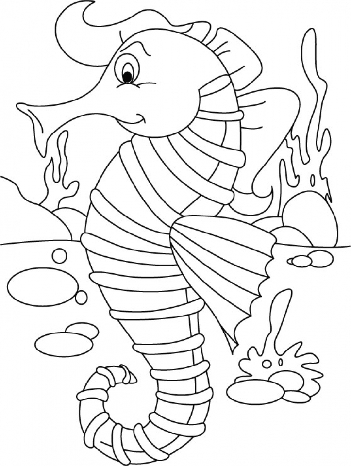 Coloring pages seahorse ~ 20+ Free Printable Seahorse Coloring Pages ...