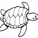 Online Turtle Coloring Pages to Print   swsyq