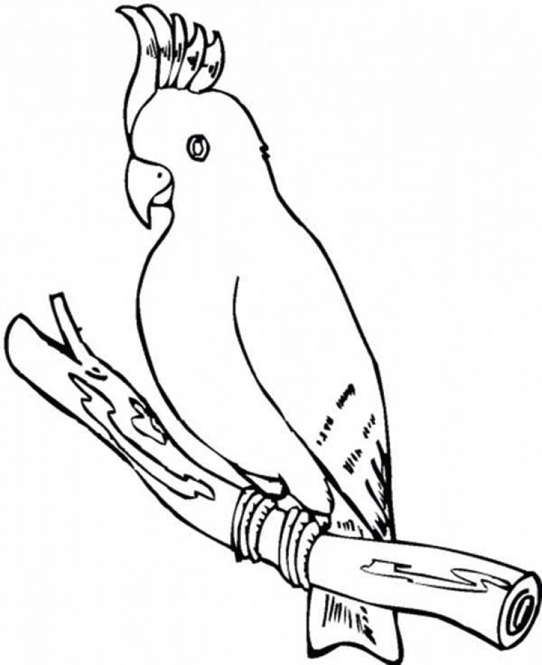 Get This Parrot Coloring Pages
