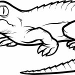 Printables for Toddlers   Alligator Coloring Pages Online Free   m7pzl