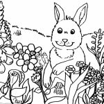 Spring Coloring Pages for Toddlers   dl53x