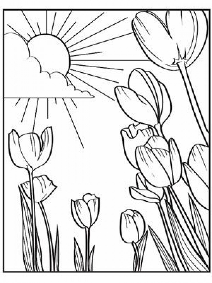 spring coloring pages free to print j6hdb new