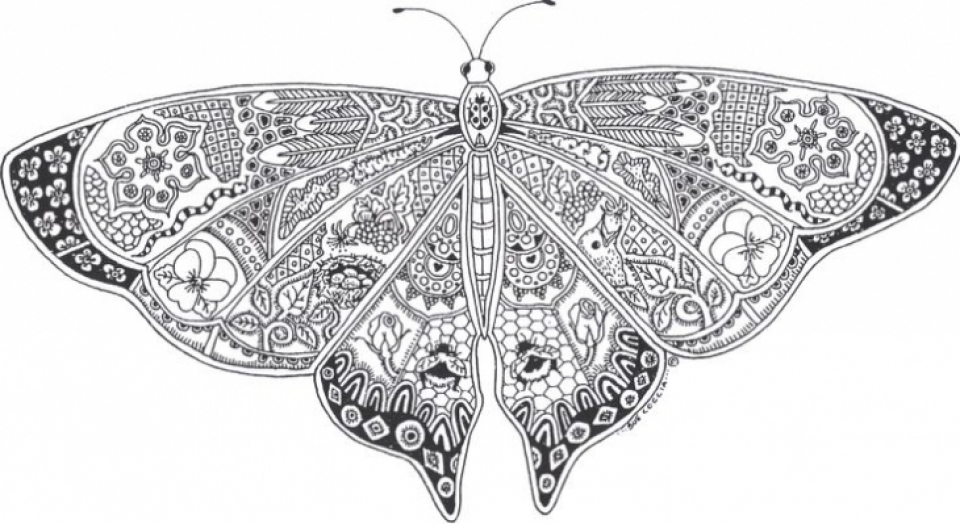 Free Difficult Animals Coloring Pages for Grown Ups   HGF4