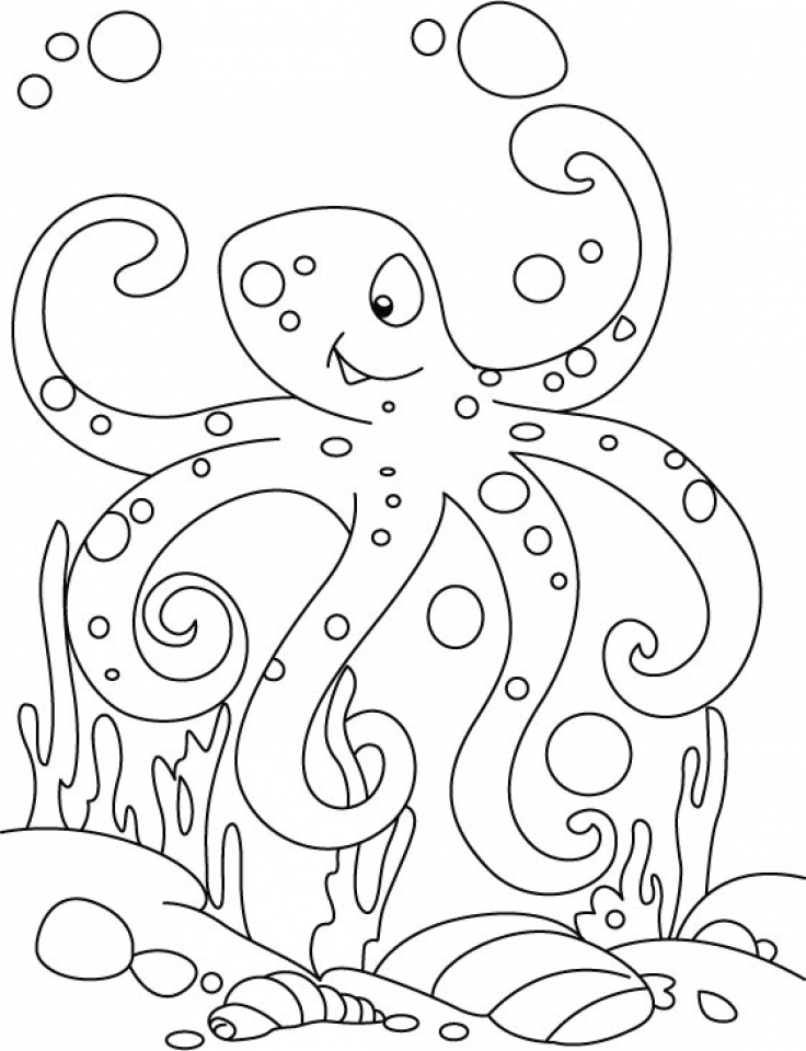 Free Octopus Coloring Pages to Print   rk86j