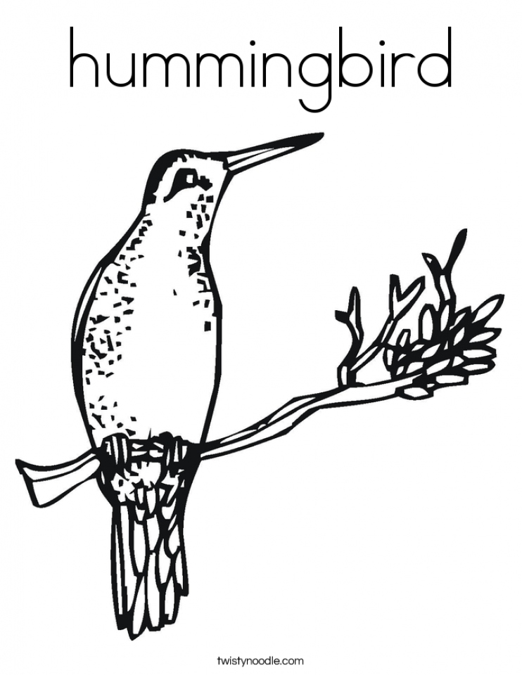 Get This Hummingbird Coloring Pages Free Printable 01108