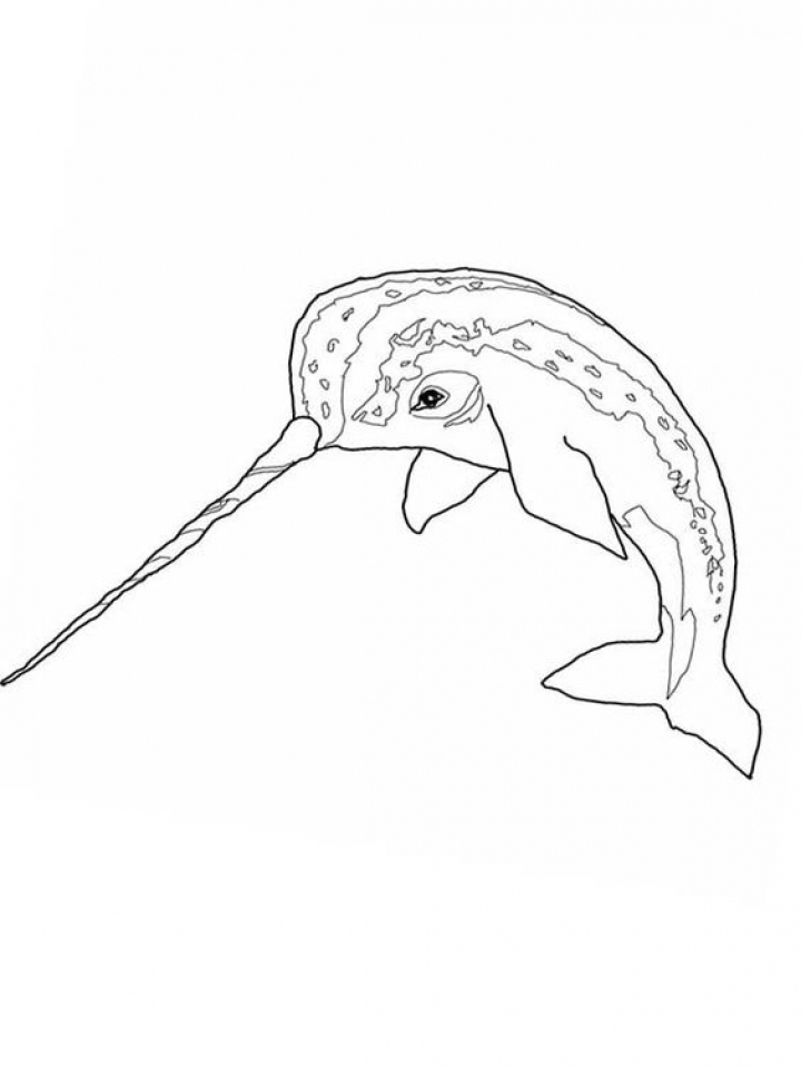 Get This Narwhal Coloring Pages