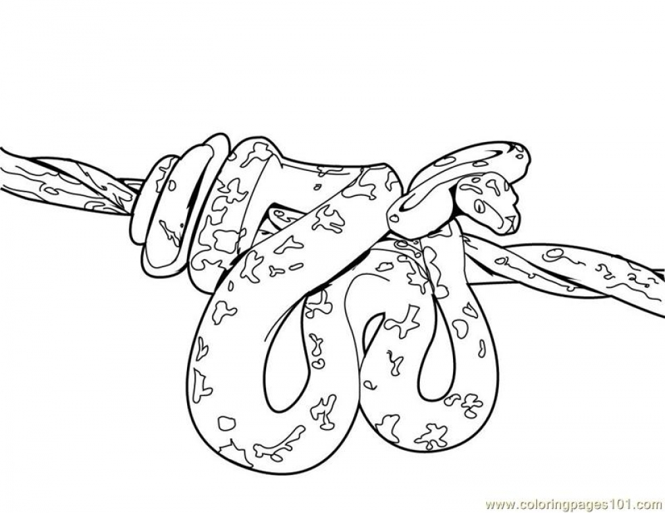 20 Free Printable Snake Coloring Pages