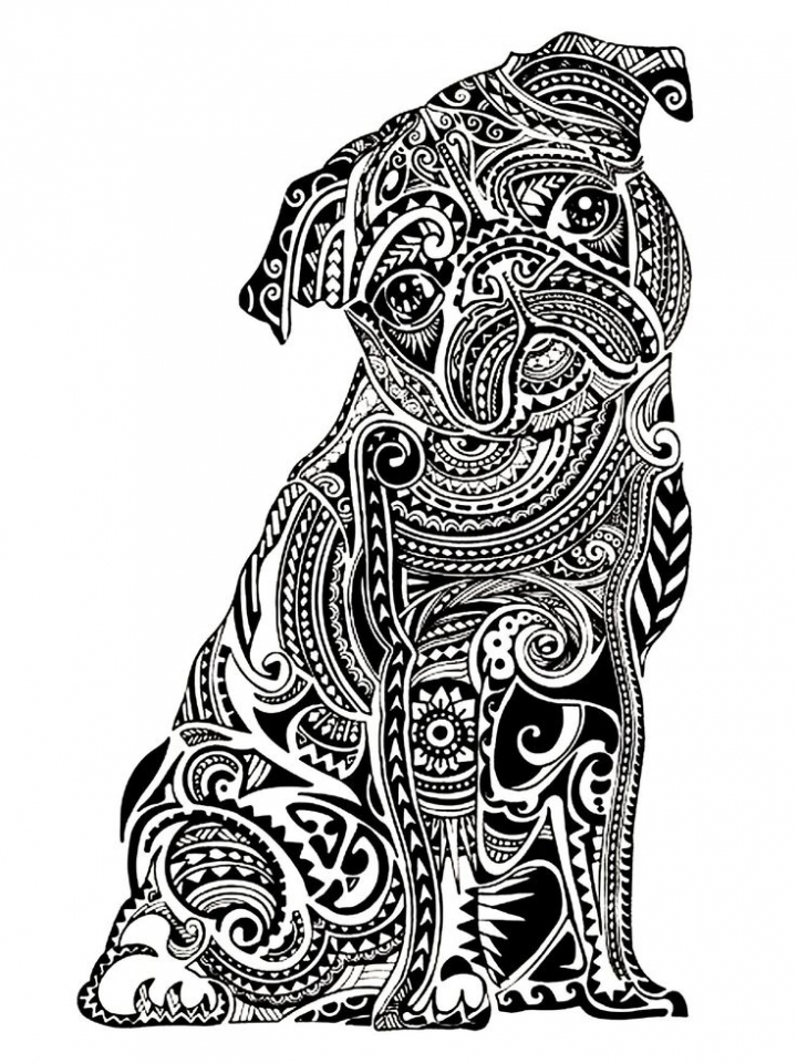 Printable Difficult Animals Coloring Pages for Adults   54GJH
