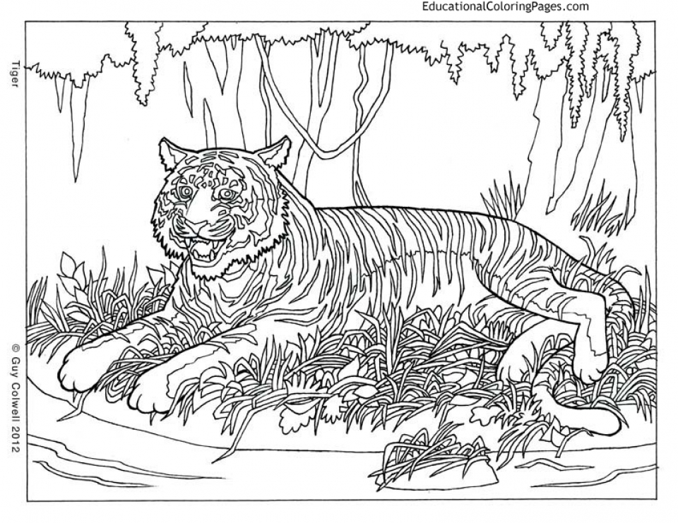 Get this printable difficult animals coloring pages for for Hard printable coloring pages