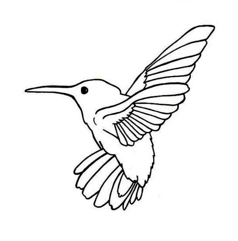 Get This Printable Hummingbird
