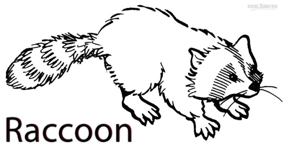 20 Free Printable Raccoon Coloring Pages