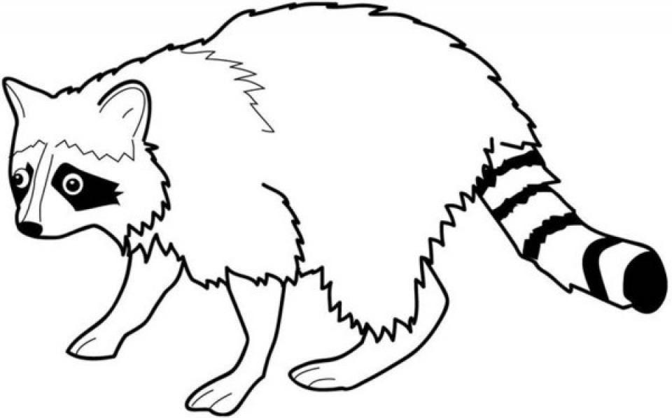 Get This Printable Raccoon Coloring Pages Online 59808