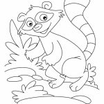 Printable Raccoon Coloring Pages Online   89391