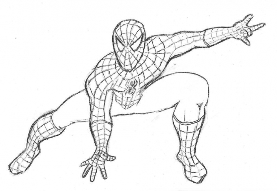 Printable Spiderman Coloring Pages Online   735295