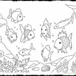 Rainbow Fish Coloring Pages Free   6SGW0