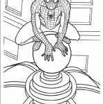 Spiderman Marvel Superhero Coloring Pages Printable   12670