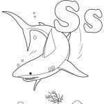 Baby Shark Coloring Pages   41702