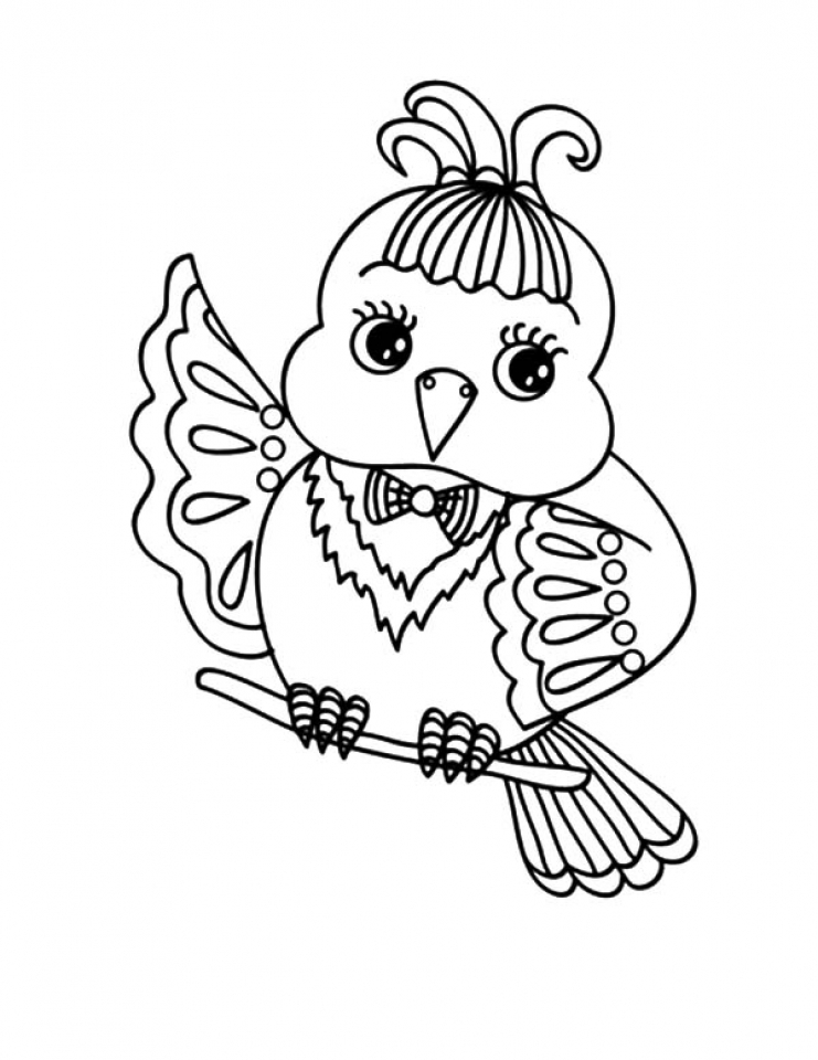 Bird Coloring Pages Free Kids Printable   67118