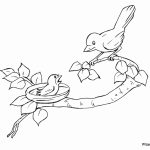 Bird Coloring Pages Kids Printable   26481