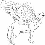 Coloring Pages of a Wolf   56412