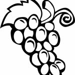 Free Fruit Coloring Pages to Print   51961