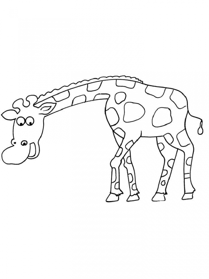 Giraffe Coloring Pages Free   04662