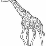 Giraffe Coloring Pages Realistic Animals   27601