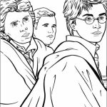 Harry Potter Coloring Pages Free to Print   74892