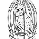 Harry Potter Coloring Pages to Print Out   57934