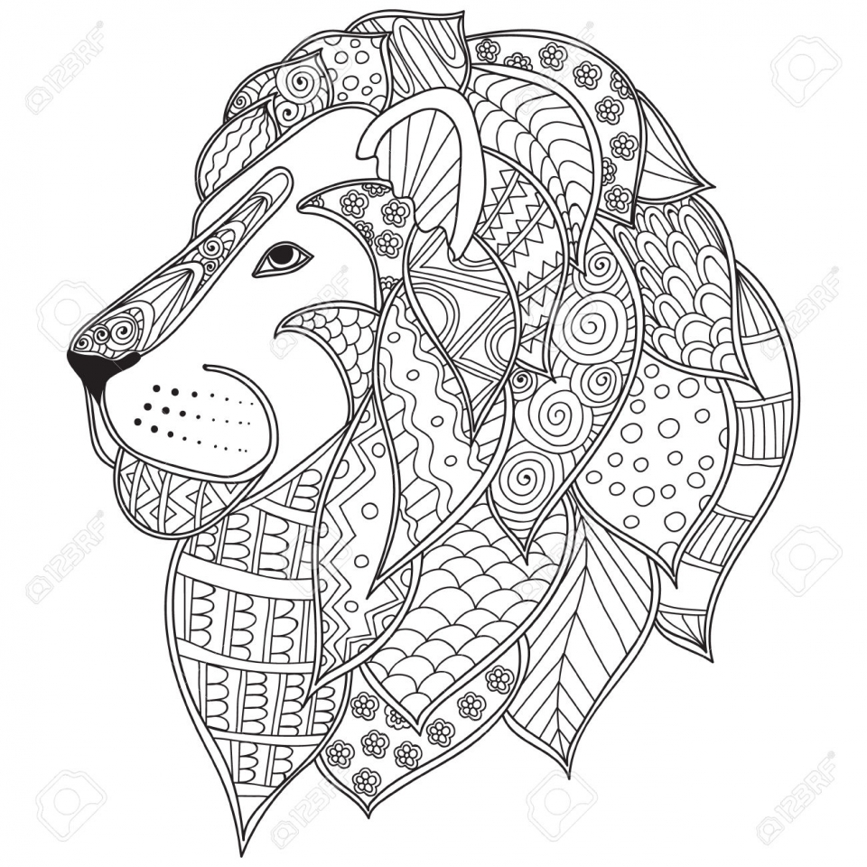 Lion Coloring Pages for Adults Free Printable   88428