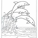 Printable Dolphin Coloring Pages   21748