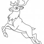 Reindeer Coloring Pages Printable   51428