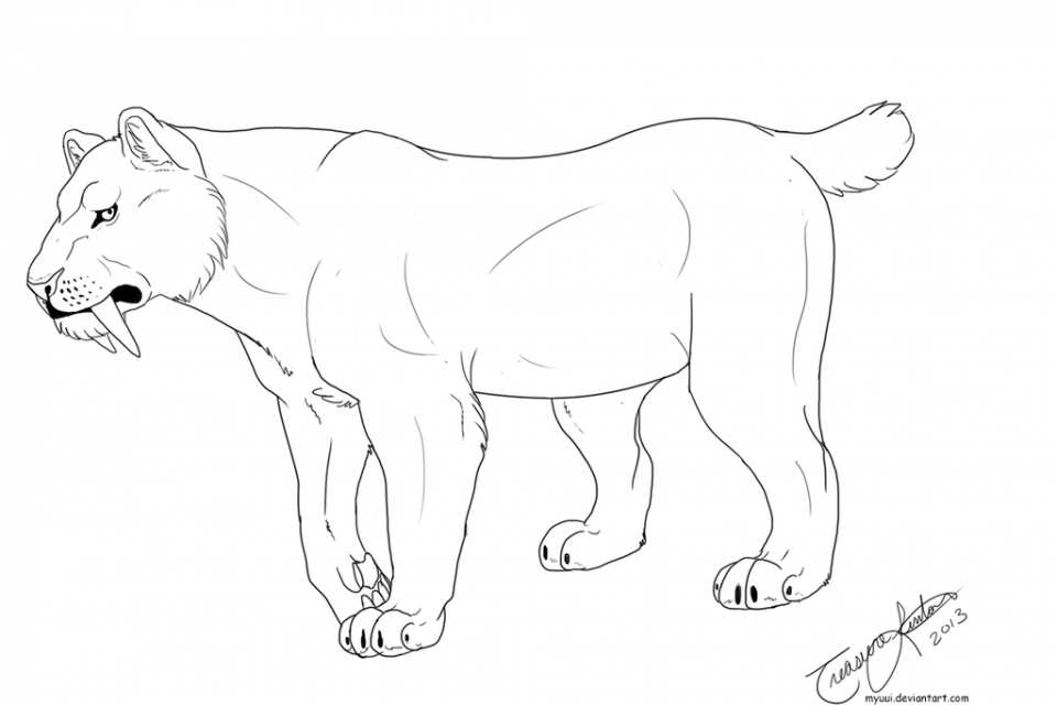 Sabertooth Tiger Coloring Pages Saber Tooth Tiger Coloring Pages