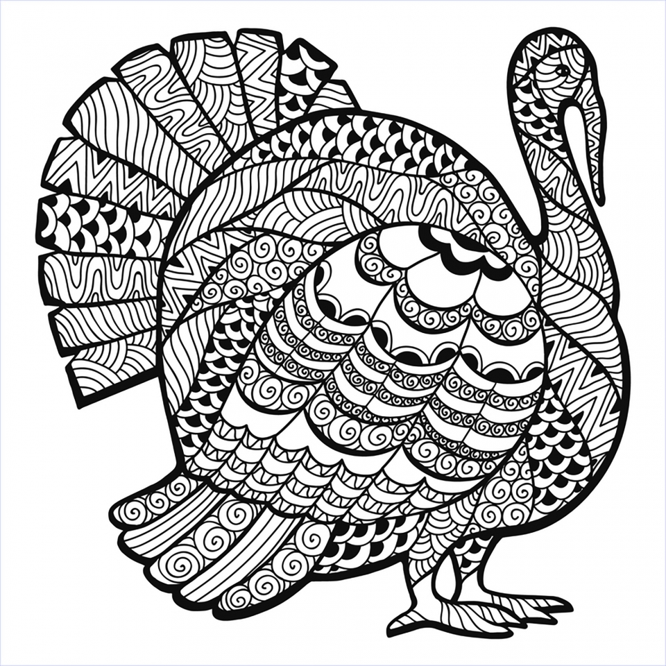 Turkey Coloring Pages for Adults   93172
