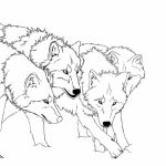 Wolf Coloring Pages Free to Print   31332
