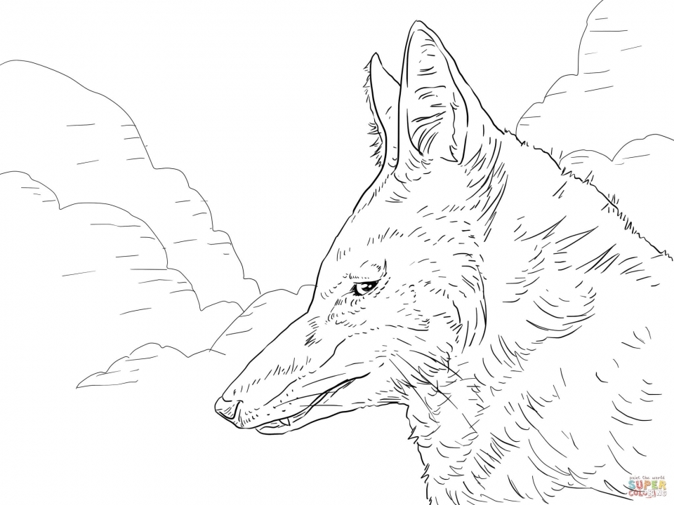 Wolf Coloring Pages to Print for Free   96502