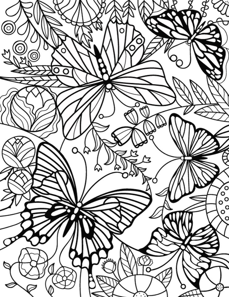 Advanced coloring pages of Butterfly for Adults -