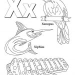 Letter X Coloring Pages - xy3ma